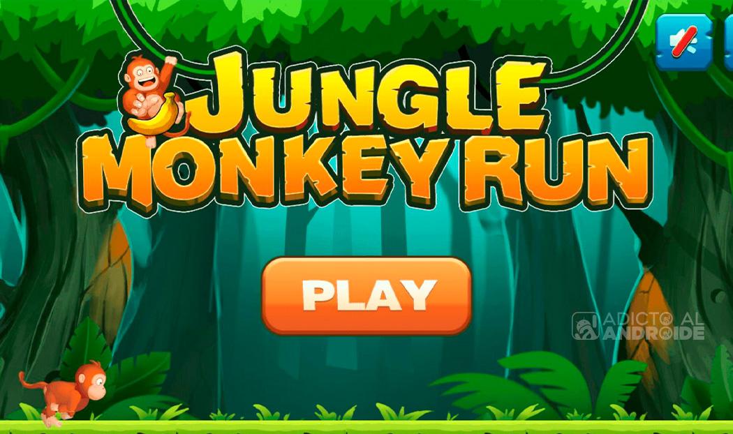 Monkey Jungle Run